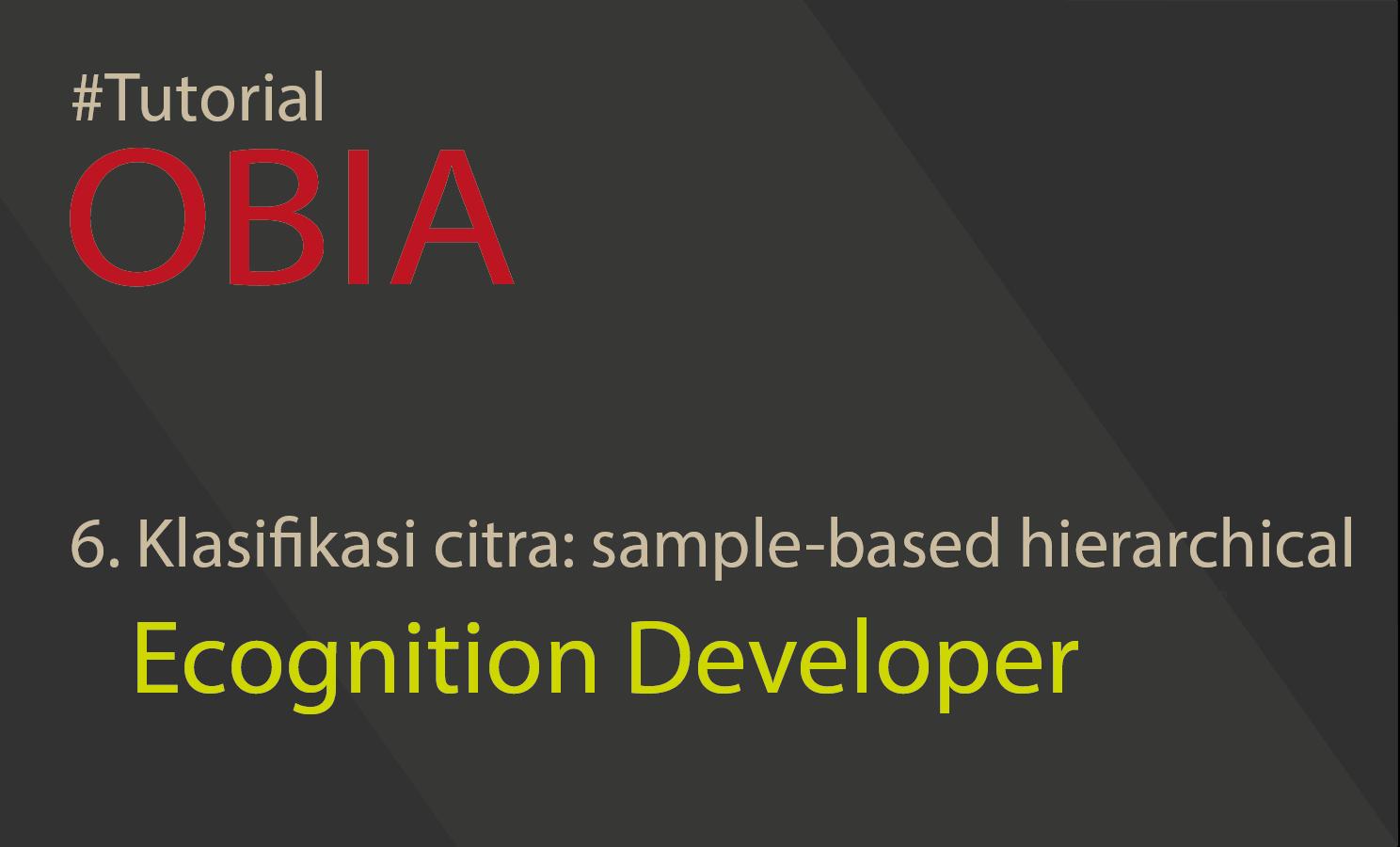 klasifikasi sampel hirarki obia ecognition